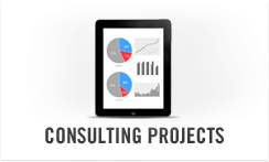 Consulting Products